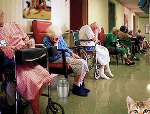 geriatric day room